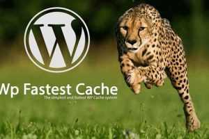 دانلود افزونه افزایش سرعت سایت وردپرسی WP Fastest Cache