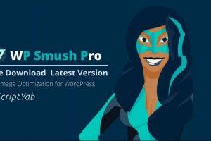 فشرده سازی فوق العاده تصاویر با افزونه حرفه ای WP Smush Pro